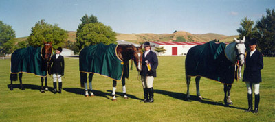 Gore Dressage Champs English Cotton Covers